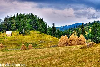 Apuseni Mountains, Romania 2007
